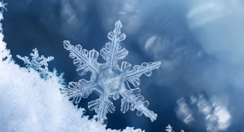 Snowflake targets Java and Scala devs, will soon slither after Pythonistas too