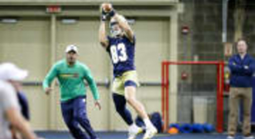 Notre Dame Spring By The Numbers