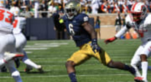 Snap Counts: Notre Dame vs. New Mexico