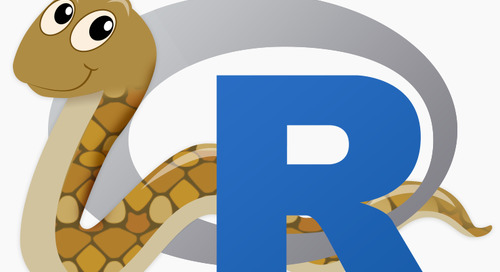 R vs. Python: What's the best language for Data Science?
