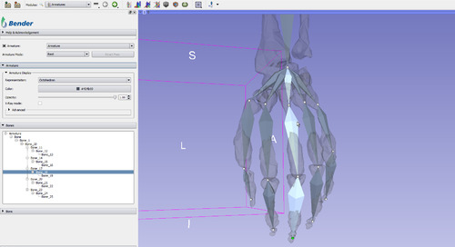 Kitware – Software for Repositioning Voxelized Anatomical Models