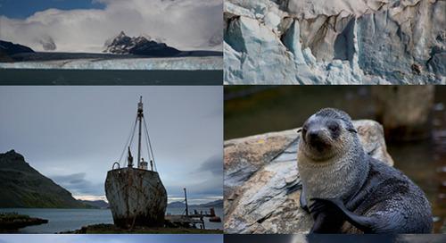Simon's Final Expedition of the Antarctic season