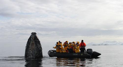 Prendre la Mer avec Quark Expeditions – French and Multilingual Departures in Antarctica