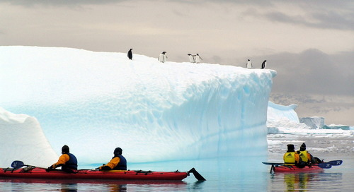 Antarctic Kayaking - An Adventure Travel Experience Like No Other