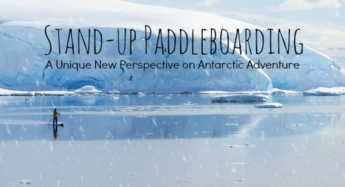 Stand-up Paddleboarding: A Unique New Perspective on Antarctic Adventure