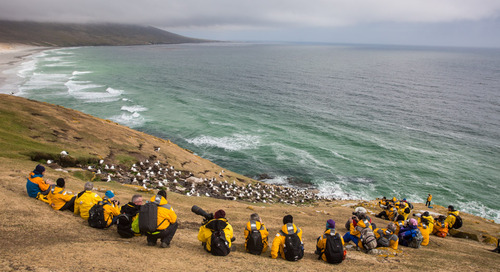 Fantastic Falklands