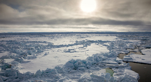An Arctic Expedition Through The Northeast Passage