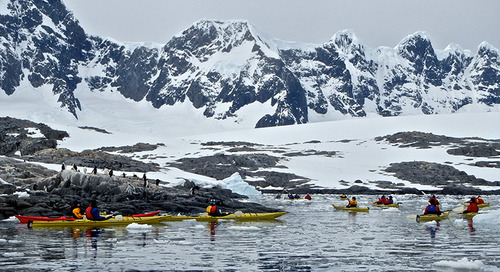 Antarctic Adventure Activities for All Types of Travelers