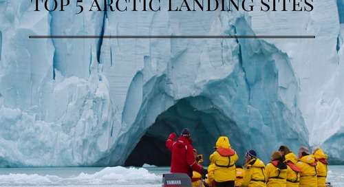 The Top 5 Arctic Landing Sites