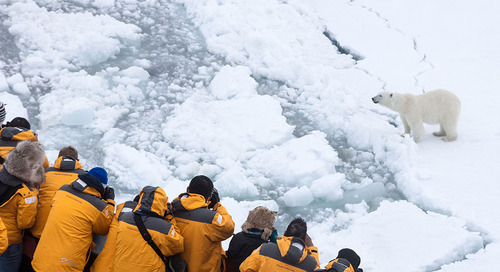 Top 7 Most Brag-worthy Polar Experiences