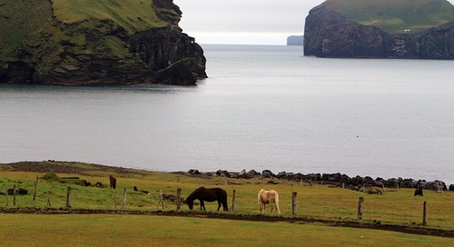 From Vikings to Elves – the Extreme Contrasts of Iceland