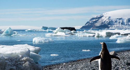 Cool Spa Treatments in Antarctica