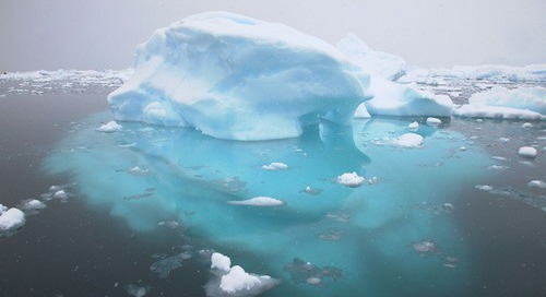 Iceberg facts
