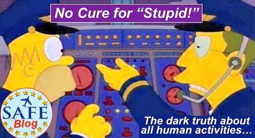 """Ideas to """"Cure Stupid!?"""""""
