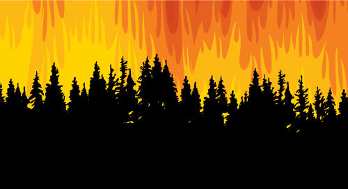 AI Fire Detection: Computer Vision Guards the Forest