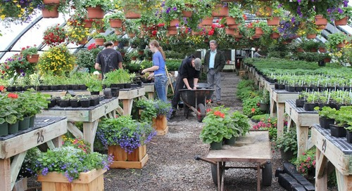 Horticulture Classes Turn BGHS Campus Into Classroom