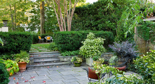 9 Inspiring Gardens Gain Privacy and Screening With Plants (11 photos)
