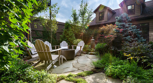 Patio of the Week: A Lush Backyard for a Plant Collector (10 photos)