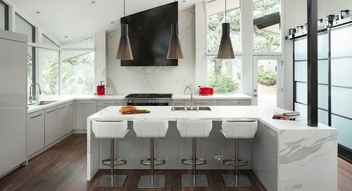 Midcentury Modern Remodel  Preserves Architecture and Views (23 photos)
