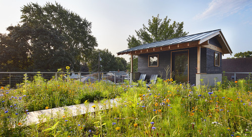 A Sauna and a Native Meadow Garden Elevate a Minnesota Rooftop (9 photos)