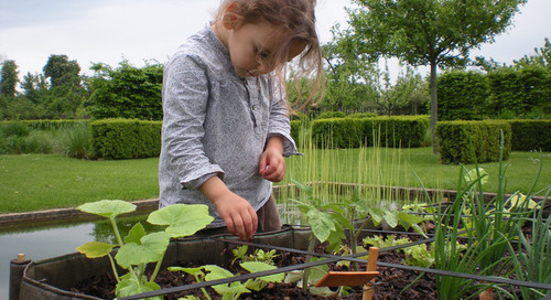 Spark Wonder in the Garden With These Family-Friendly Ideas (12 photos)