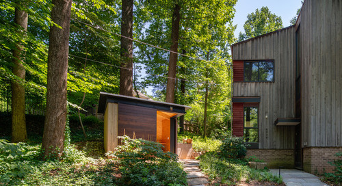 A Stylish Shed Sits in a Woodland Garden Designed to Slow Runoff (9 photos)