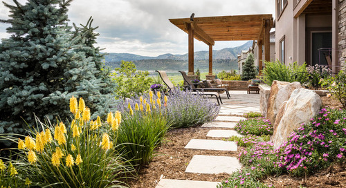 How to Get Started on a Landscape Redesign (9 photos)