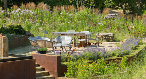 See 3 Gardens Beautifully Transformed by Native Plants (15 photos)