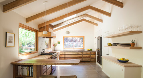 Kitchen of the Week: Organic Modern Style for a Chef and a Baker (12 photos)