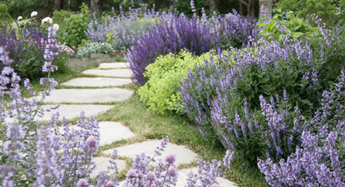 Fill Your Garden With Visions of Serenity (10 photos)