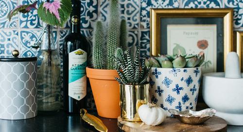 5 Favorite Succulents to Grow Indoors (9 photos)