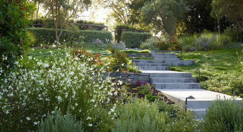 5 Ideas for a More Earth-Friendly Garden (5 photos)