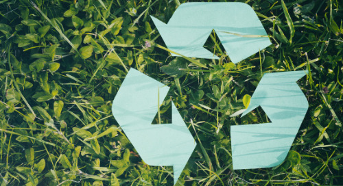 5 Steps to Starting an Office Recycling Program