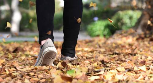 6 Tips for Staying Healthy in the Fall