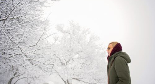 4 Best Ways a Small Business Can Prepare for Winter
