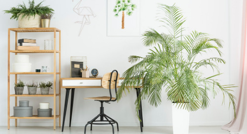 4 Easy Ways to Spring-Clean Your Workspace