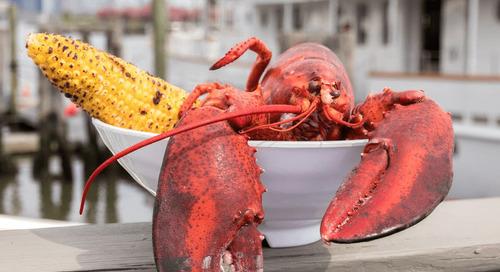 "Jersey City's Chef Franco Robazetti Wins Big on ""Chopped"""