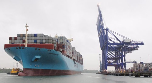 2019 a better year for container lines as rates rose and fuel prices fell