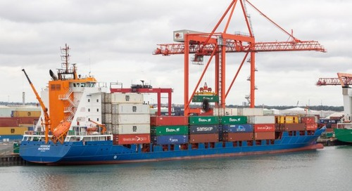 Feeders get ready for flood of enquiries from Irish shippers as 'no-deal' looms