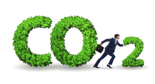 Customers must play their part to create greener supply chains