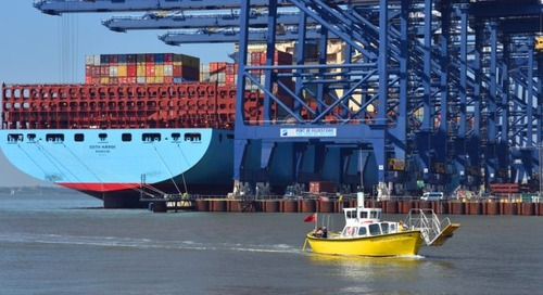 'The shambles that is Felixstowe port is costing everyone time and money'