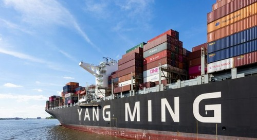 Returning chartered ships makes a dent in Yang Ming results