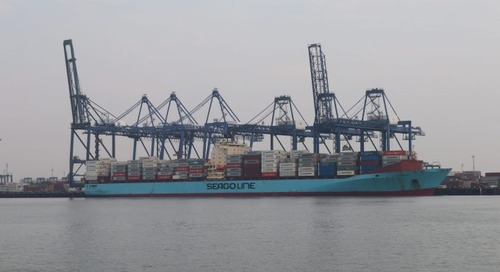 Felixstowe port apologises to customers and rescinds empty container ban