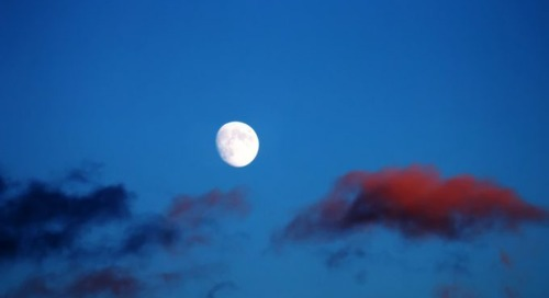 Supply chain radar: There's a bad moon rising, it's in the numbers