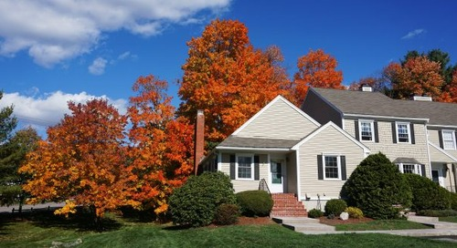 Housing Market Cools as Winter Approaches