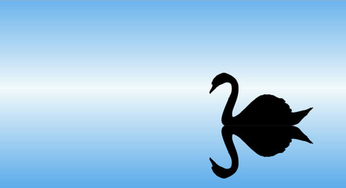 Video: How To Make Decisions During 'Black Swan' Events