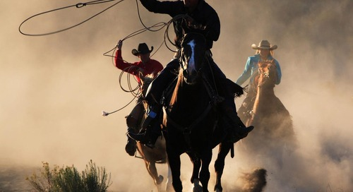Taming The Wild West Of Marketing Operations