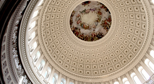 A Week in the Life of a Capitol Hill Intern