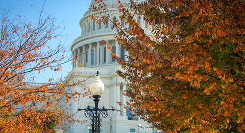 Why Fall Is the Best Time to Intern in D.C.