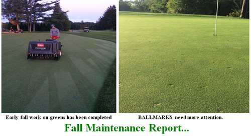 Fall Maintenance & Ballmarks
